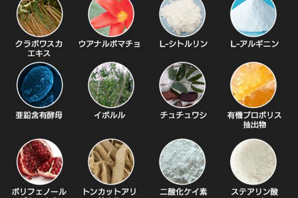 ギガエレクト130種類の成分